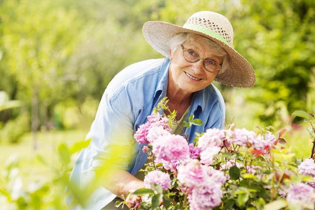 Senior-Woman-Gardener-1.jpg