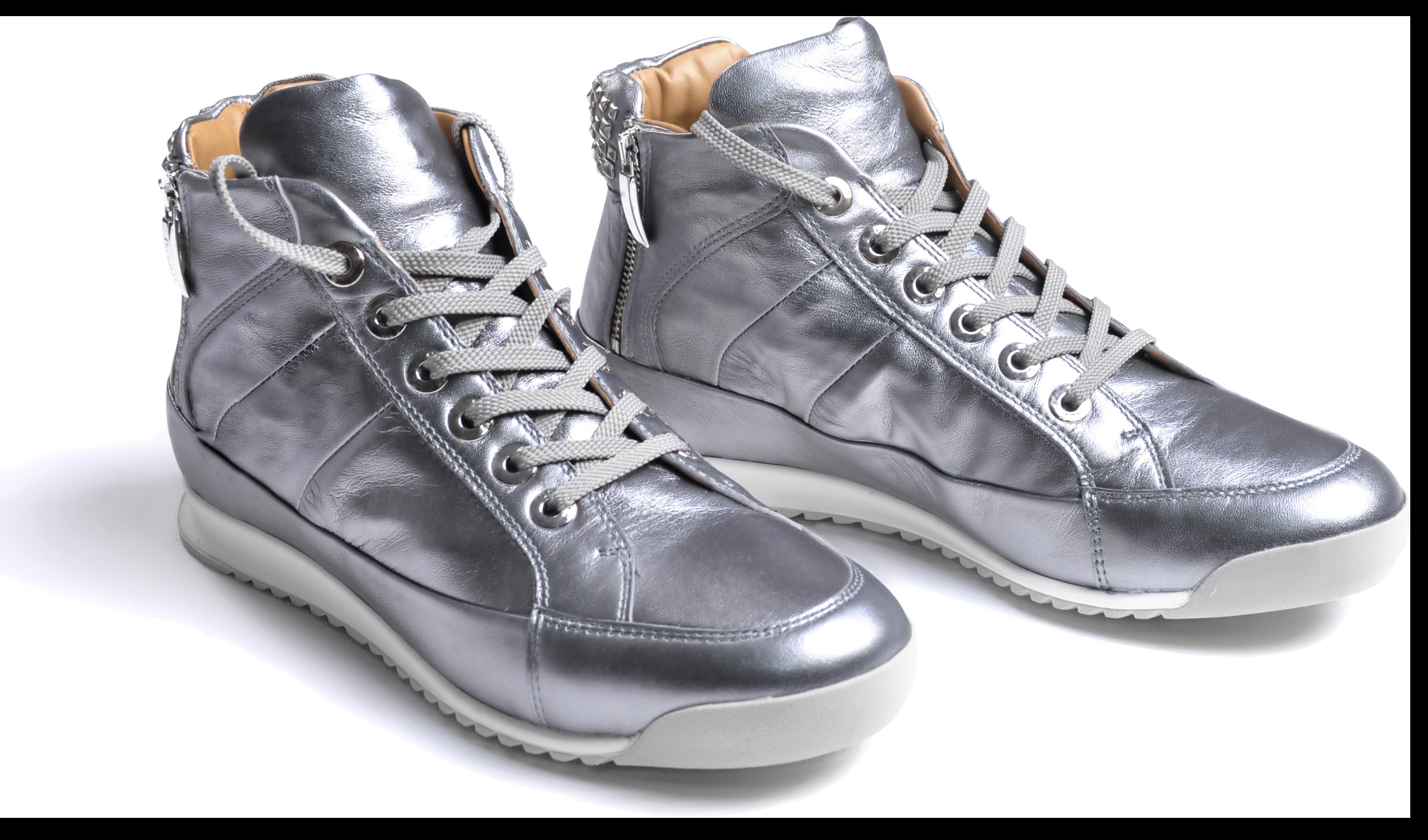 Silver Sneaker.png