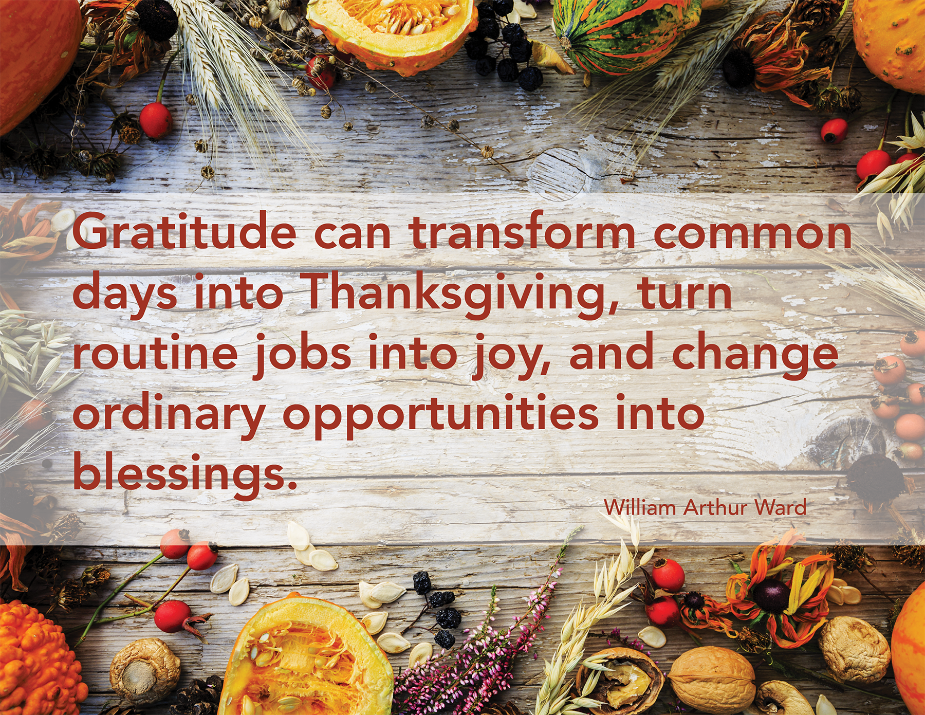 Thanksgiving_LR.png